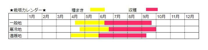 オクラの栽培時期カレンダー